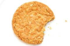 Oat biscuit Royalty Free Stock Images