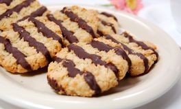 Oat Biscuits with Chocolate. Oat biscuits served on the plate for tea time Royalty Free Stock Photos