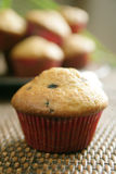 Oat and blueberry muffin Stock Image