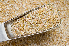 Free Oat Bran Stock Images - 19642064