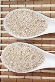 Oat bran Royalty Free Stock Photo