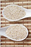 Oat bran Stock Photography