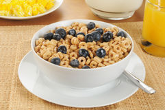 Oat cereal with blueberries Stock Image