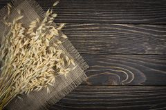 Oat cereal grain. On wood background Royalty Free Stock Photo