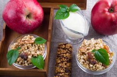 Oat cereal with walnuts and raisins Royalty Free Stock Photos