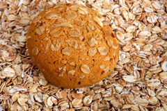 Oat cookie Stock Images