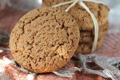 Oat cookies Royalty Free Stock Photo