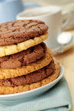 Oat cookies and Chocolate cookies Royalty Free Stock Photo