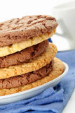 Oat cookies and Chocolate cookies Stock Image