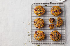 Oat cookies with cranberries. Copy space. Top view Royalty Free Stock Images