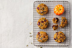 Oat cookies with cranberries and maple glaze on a colling rack. Copy space. Top view Royalty Free Stock Images