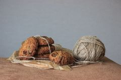 Oat cookies with raisins and decore on grey background. Homemade food. royalty free stock image