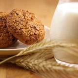 Oat Cookies and Milk Stock Image