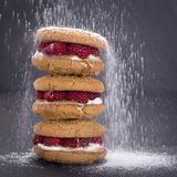 Oat cookies with raw raspberry, honey and soft cheese on the background of black slate , close up stock photography