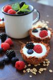 Oat cookies tarts with fruits Royalty Free Stock Photography