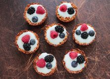Oat cookies tarts with fruits Royalty Free Stock Image