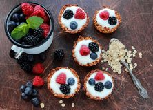Oat cookies tarts with fruits Royalty Free Stock Images