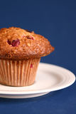 Oat and cranberries muffin royalty free stock photography