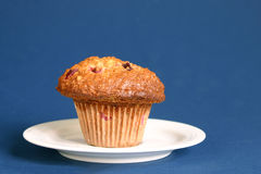 Oat and cranberries muffin Stock Photo