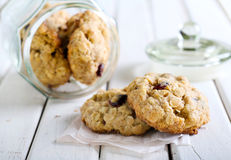 Oat, cranberry wholemeal cookies Stock Image