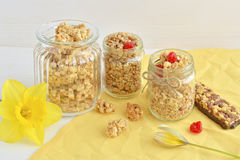 Oat crunchy and muesli bar Stock Images