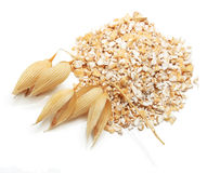 Oat ears of grain and bran isolated stock image