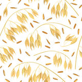 Oat ears of grain and bran. seamless pattern vector. Golden spike and corn. Oat ears of grain and bran isolated on white background. Golden spike. Side view Royalty Free Stock Images