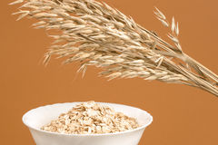 Oat-Ears and Oat Flakes Stock Images