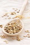 Oat flake. Stock Photography