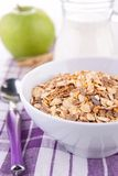 Oat flake Royalty Free Stock Photo