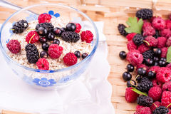 Oat flake porridge with fresh berries Royalty Free Stock Photos