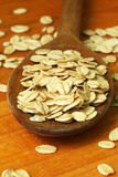 Oat flakes Stock Photography