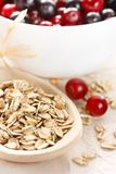 Oat flakes and berries. Stock Photography