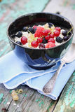 Oat flakes with berries Stock Photos