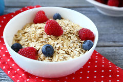 Oat flakes with berries Royalty Free Stock Photography