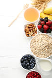 Oat flakes with berries Royalty Free Stock Photo