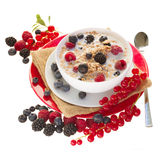 The oat flakes with berries Royalty Free Stock Images