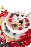 The oat flakes with berries on white. The oat flakes with fresh berries isolated on white background Royalty Free Stock Images