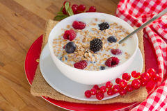 The oat flakes with berries Royalty Free Stock Photos