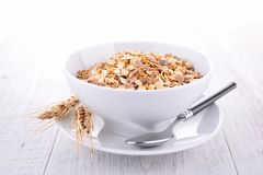 Oat flakes. Bowl of oat flakes and spoon Royalty Free Stock Photos