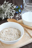 Oat flakes in bowl Stock Images
