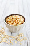 Oat flakes Royalty Free Stock Photo