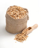 Oat flakes in burlap sack with wooden spoon Stock Images