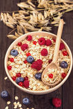 Oat flakes cereal Royalty Free Stock Photo