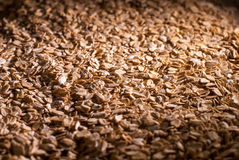 Oat flakes in a direct light. Oat flakes under the directed light royalty free stock images