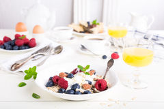 Oat flakes with fresh berries Royalty Free Stock Photos