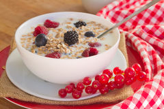 The oat flakes with fresh berries Royalty Free Stock Photos