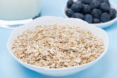 Oat flakes, fresh blueberries and milk for breakfast, close-up Royalty Free Stock Images