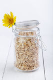 The oat flakes in glass jar and flower. Stock Images