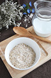 Oat flakes with milk Royalty Free Stock Images
